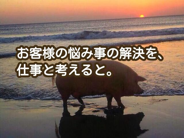 2015-03-10-12-14-22_deco