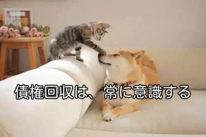 S&Pによる、日本の格付け引き下げから気付く事♪