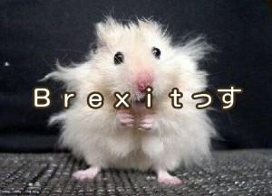 「Brexit」は、確かにブラックスワンだけどさ?